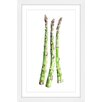 Marmont Hill 'Asparagus Stalks' by Rachel Byler Framed Painting Print on Paper