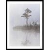 HoeiDenmark 'Trees in Fog' Framed Photographic Print