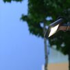 Eco Light Front 1 Head LED Outdoor Floodlight