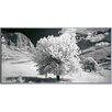 ERGO-PAUL 'Rural Scene with Mountains' Photographic Print Plaque