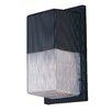 Winnick 1-Light Outdoor Wall Sconce