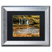 Trademark Fine Art 'Circle Of Leaves' by Michael Blanchette Framed Photographic Print