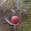 IC Innovations Heart Shaped Cast Iron Fruit Feeder