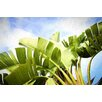 """Marmont Hill """"Tropical Charm"""" by Sylvia Cook Photographic Print on Wrapped Canvas"""