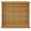 House Additions Curio Wall Mounted Cabinet