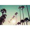 """Marmont Hill """"California Dreaming"""" by Morgan J Hartley Photographic Art on Wrapped Canvas"""