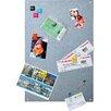 Walther Design Magnetboard Magnete