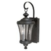 Darby Home Co Bronzewood 2-Light Outdoor Wall Lantern