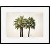 David & David Studio 'Palms 1' by Philippe David Framed Photographic Print