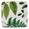 Ulster Weavers Foliage Coaster (Set of 4)