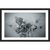 Marmont Hill 'Roses in Slumber' by Judy Stalus Framed Photographic Print