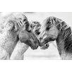 Hazelwood Home 'Horse Love Lock' Photographic Print on Glass