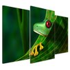 Bilderdepot24 Red-eyed Tree Frog 3-Piece Photographic Print on Canvas Set