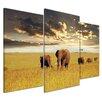 Bilderdepot24 Elephants 3-Piece Photographic Print Set on Canvas