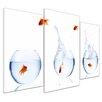 Bilderdepot24 Fish Olympics 3-Piece Photographic Print Set on Canvas
