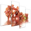 Bilderdepot24 Orchid 4-Piece Photographic Print on Canvas Set