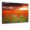 Bilderdepot24 Poppy Field Framed Photographic Print on Canvas