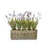 Castleton Home Lavender Floral Arrangements in Planter