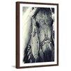 Marmont Hill 'Splendor' Framed Photographic Print on Paper