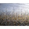 dCor design 'Reach up' Framed Oil Painting Print on Canvas