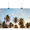 Big Box Art Tropical Palm Trees Photographic Print
