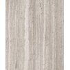 """Seven Seas 6"""" x 3"""" Marble Tile in Polished Oyster Gray"""
