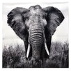 Home Loft Concept 'Elephant' Photographic Print on Glass