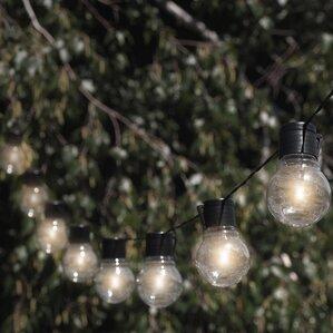 Nitebulbs Solar 10 Light Globe String Lights