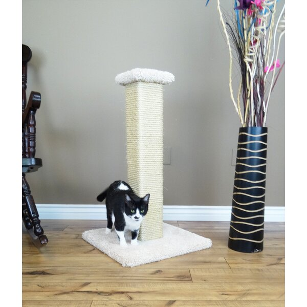 New cat condos 33 ultimate full sisal cat scratching post for Chaise lounge cat scratcher