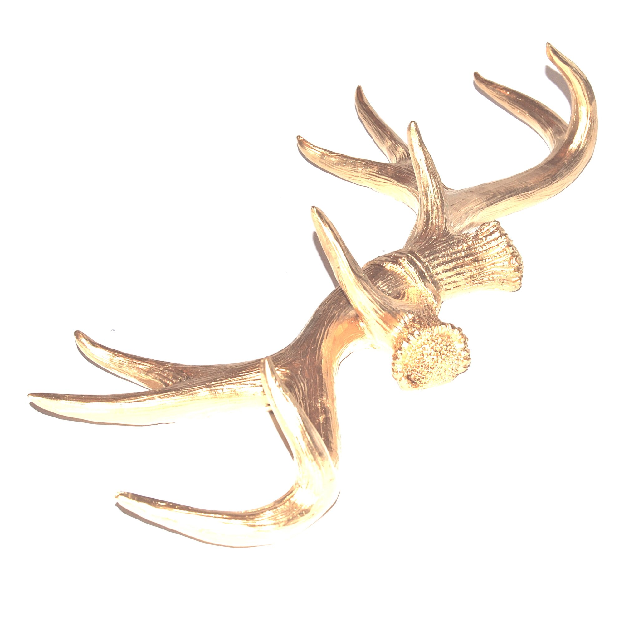 Near And Deer Faux Taxidermy Antler Wall Decor Amp Reviews