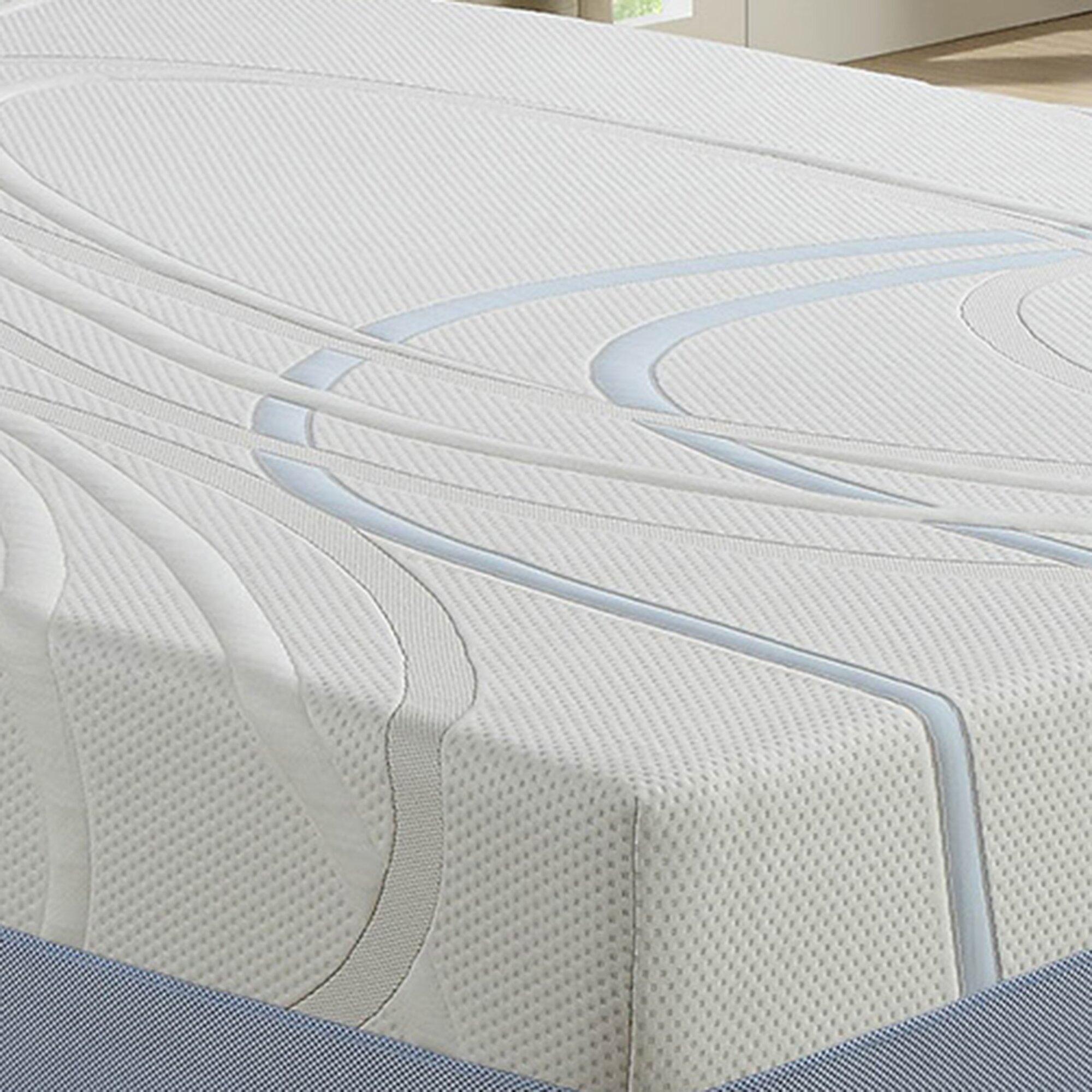12 Firm Gel Memory Foam Mattress Reviews Birch Lane
