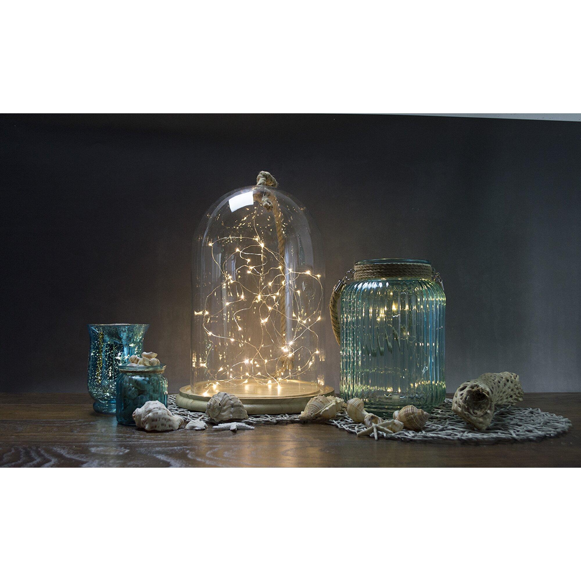 Boston Warehouse Trading Corp Allure 60-Light 20 Ft. Fairy