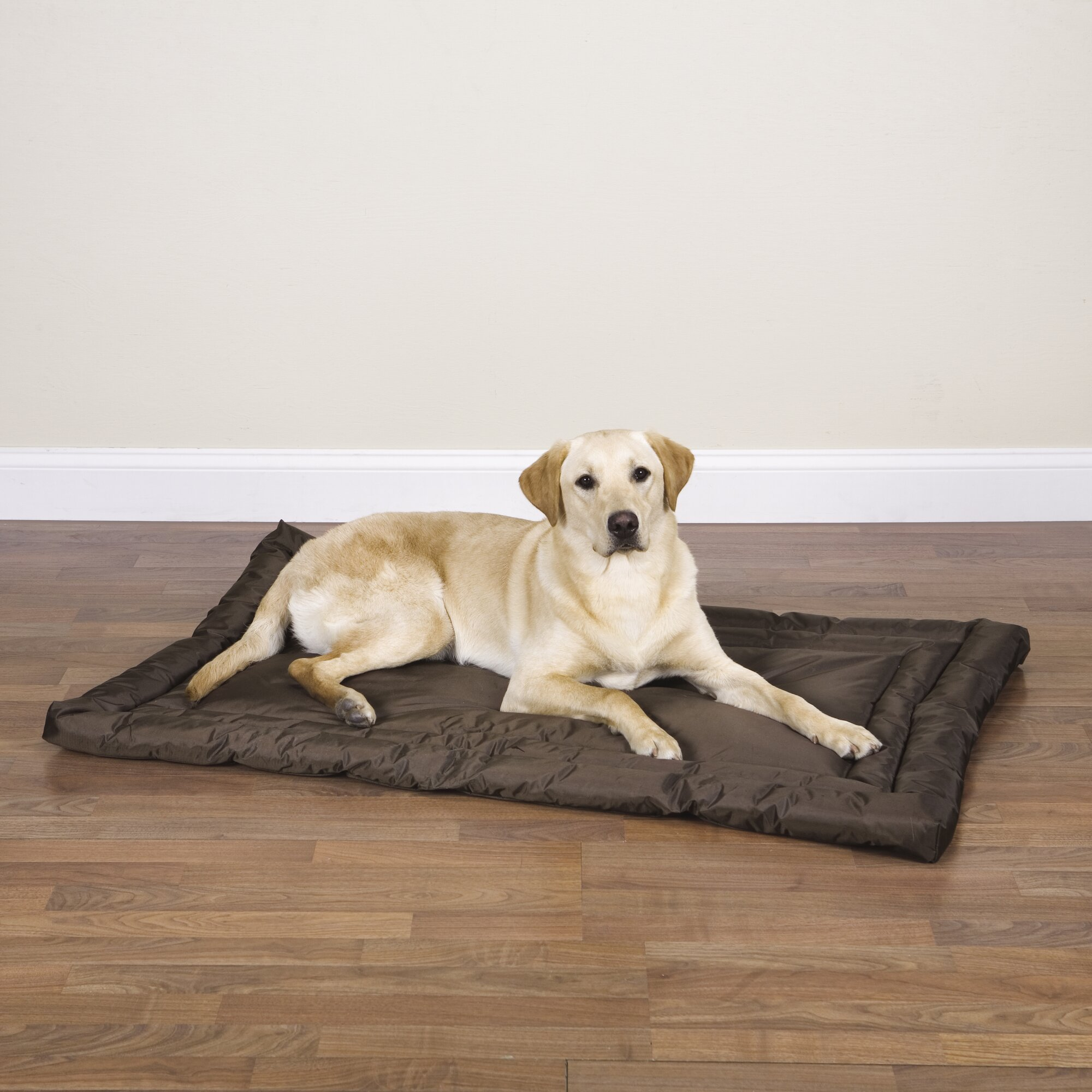 Slumber Pet Water Resistant Dog Mat Amp Reviews Wayfair