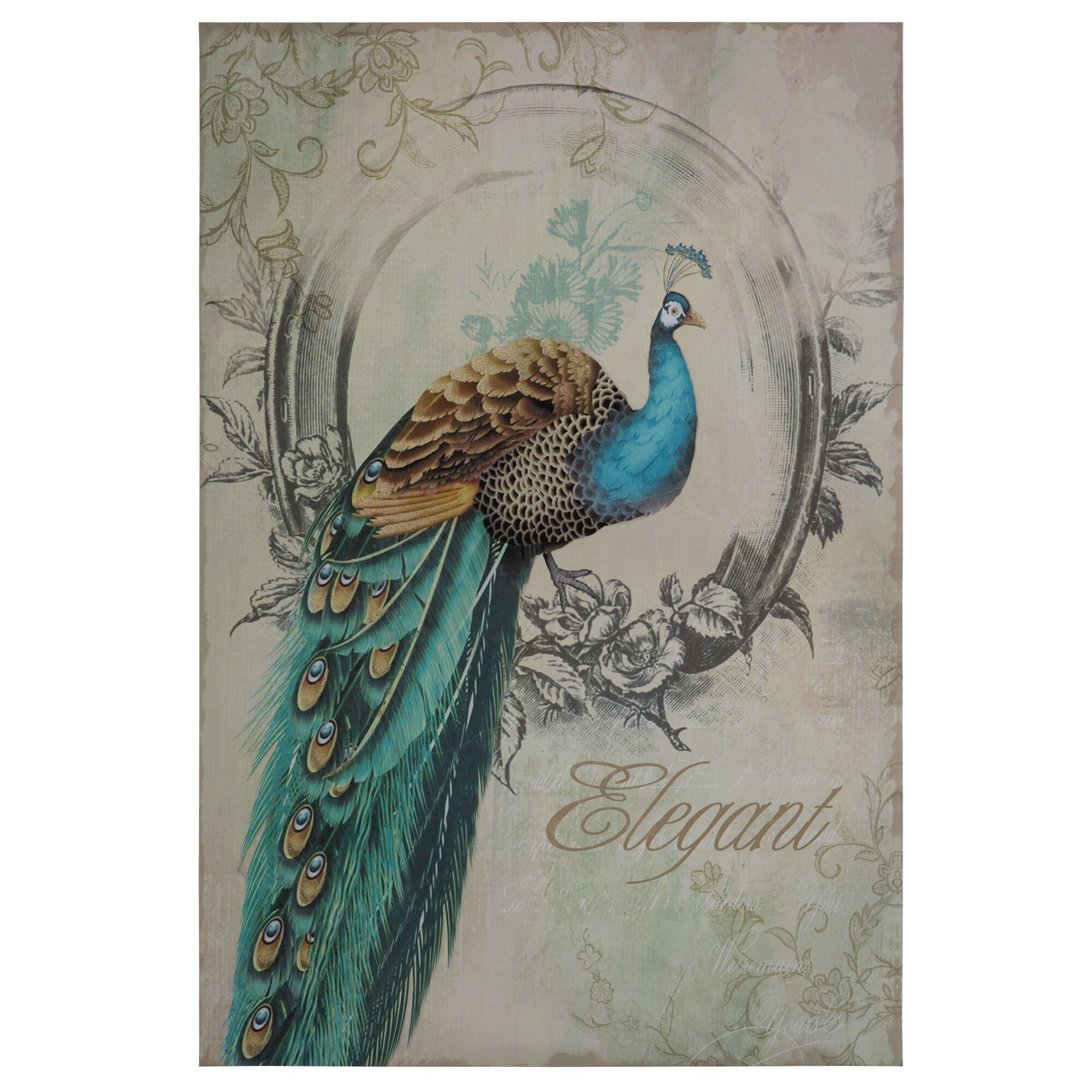 peacock poise i graphic art on wrapped canvas - Yosemite Home Decor