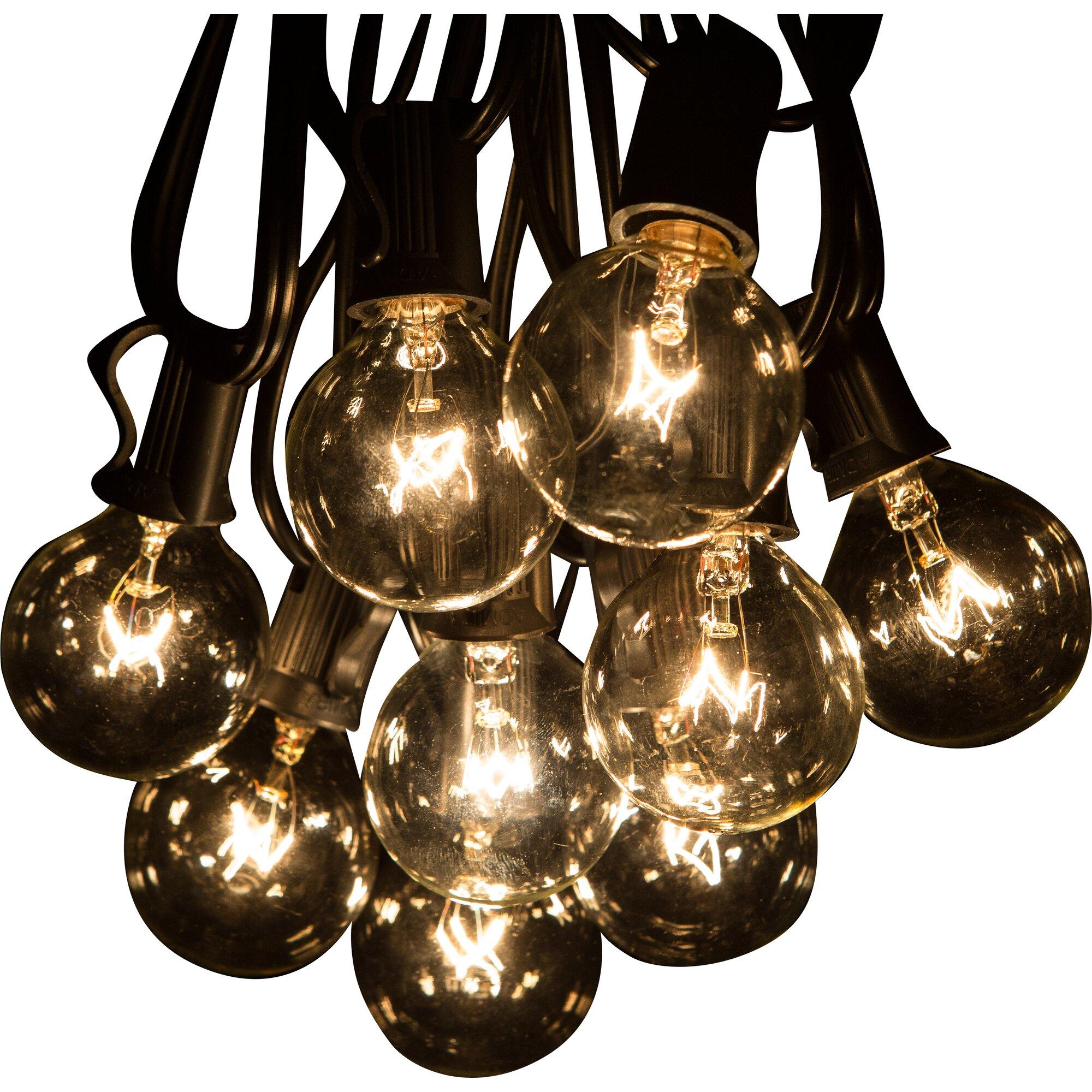 Globe String Lights 50 Ft : Jaime 50-Light 50 ft. Globe String Lights & Reviews Birch Lane