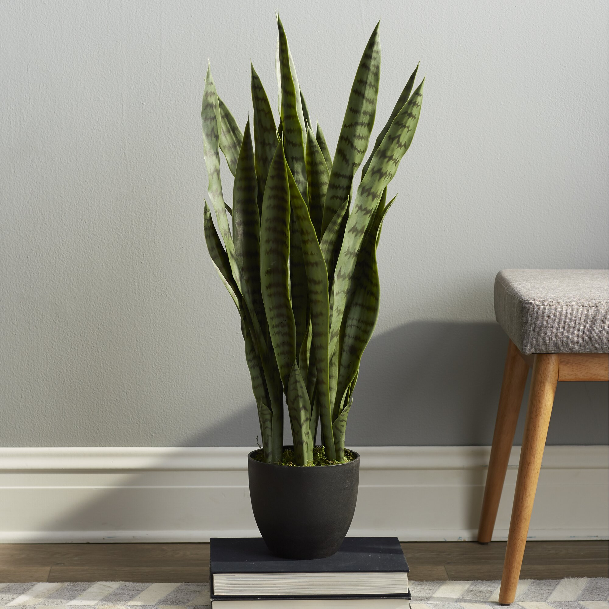 Faux Wood Flooring Reviews: Beachcrest Home Sycamore Faux Sansevieria Floor Plant In