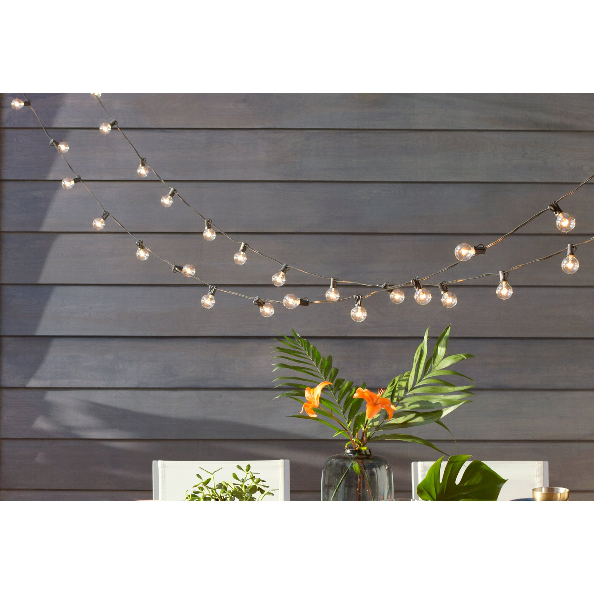 Jaime 50-Light 50 ft. Globe String Lights & Reviews Birch Lane