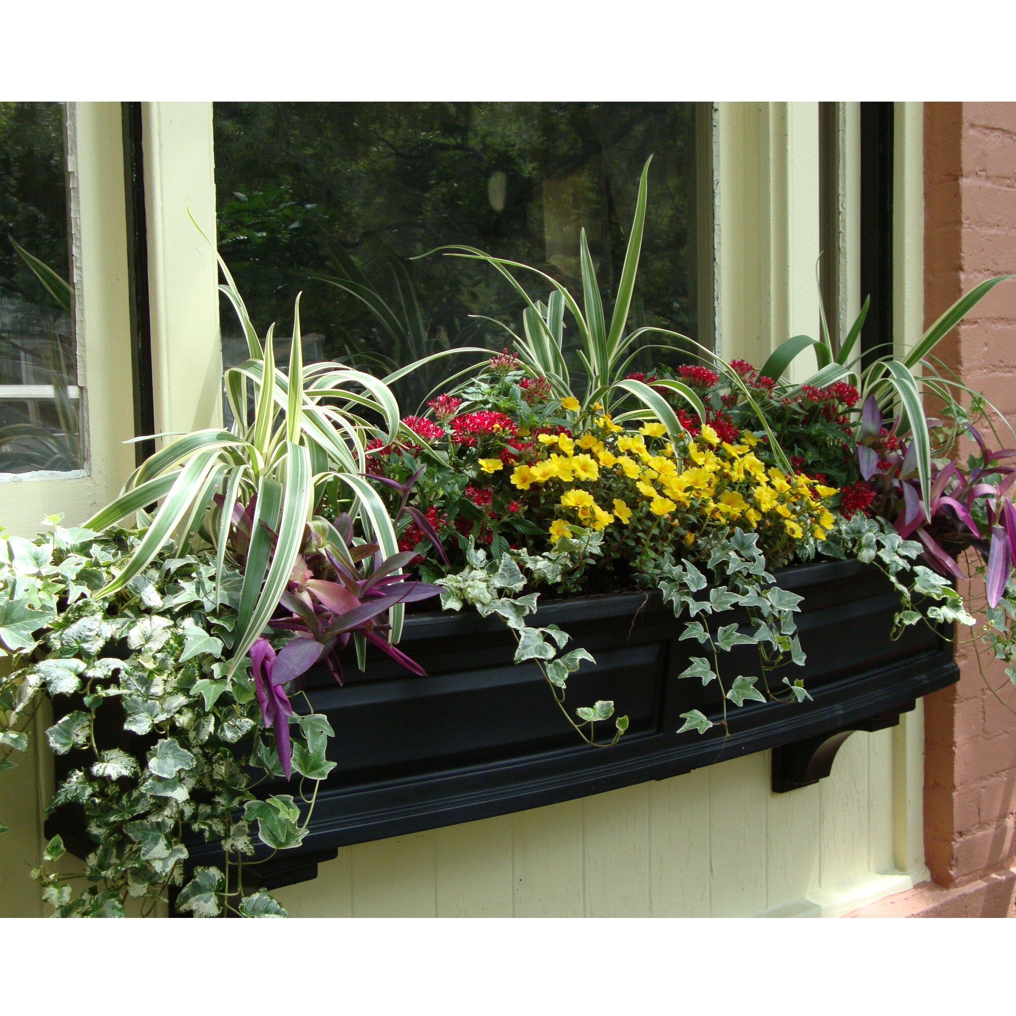mayne inc nantucket self watering plastic window box. Black Bedroom Furniture Sets. Home Design Ideas