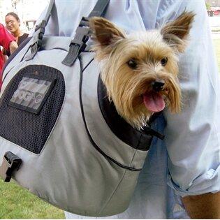 PetEgo Sport Trike Pet Carrier & Reviews