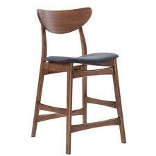 Bement Bar Stool with Cushion (Set of 2)