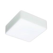 2-Light Opal Glass Flush Mount