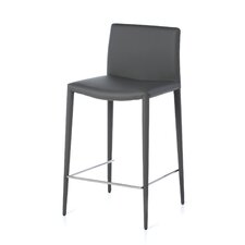 "Zeno 26"" Bar Stool (Set of 2)"