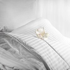 Aus Vio Winter Comforter Collection