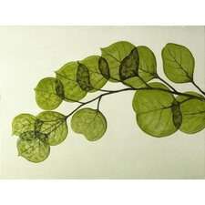 Wall Décor Leaf Graphic Art on Wrapped Canvas