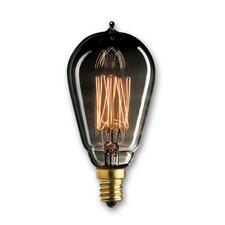 25W Smoke Incandescent Light Bulb (Set of 5)