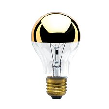 40W Amber E26/Medium (Standard) Incandescent Light Bulb (Set of 7)