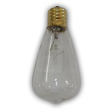 Incandescent Light Bulb (Pack of 12)