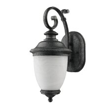 Frosted Outdoor Coach Lamp (Set Of 2)