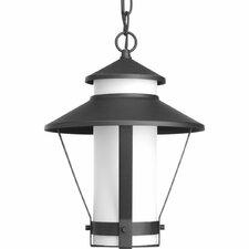 Via 1-Light Hanging Lantern