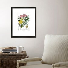 Botanical Framed Graphic Art Print